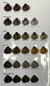 Salon Professional Supplies Pro Colour Chart 31 Correct Hair Coulor Chart