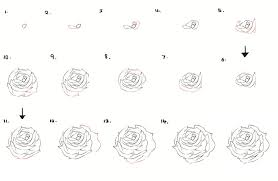 Small Picture How to Draw a Flower Dr Odd