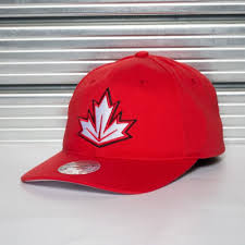 Кепка <b>MITCHELL&NESS</b> WCH TEAM SLOUCH