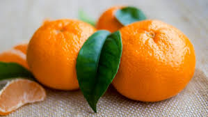 Mandarin Tangerines The Difference Between A Tangerine And A Clementine