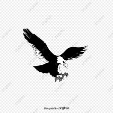 無料ダウンロードのための鷹 鷹 飛ぶ 空png画像素材