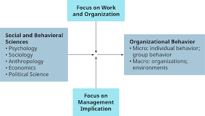 What Is Organizational Behavior A Model Of Organizational Behavior And Management