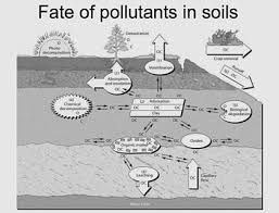 best soil contamination ideas information about soil contamination soil contamination or soil pollution is caused by the presence of xenobiotic