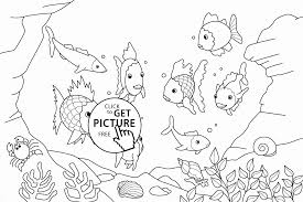 Small Picture Rainbow Fish coloring page for kids animal coloring pages