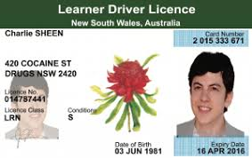Nsw Templates full Provisional Free Documents Australia Learners