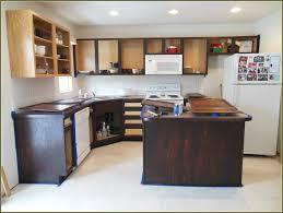 Diy Gel Stain Kitchen Cabinets Diy Staining Kitchen Cabinets Home Design Ideas