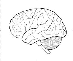 Small Picture Fresh Brain Coloring Page 25 For Your Seasonal Colouring Pages