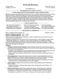 Marketing Executive Resume Examples Resume For Marketing Executive Savebtsaco 18