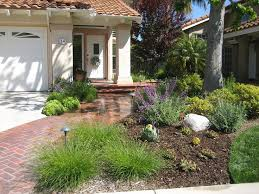 Small Picture 82 best Drought Tolerant Yard images on Pinterest Landscaping
