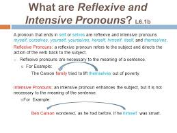 Reflexive And Intensive Ouns Worksheet - Checks Worksheet
