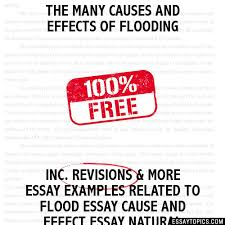 the many causes and effects of flooding essay the many causes and effects of flooding