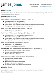 Professional Profile Resume Examples Jamesjonesexample