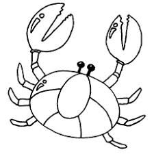 Small Picture Top 10 Free Printable Crab Coloring Pages Online