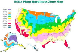 Hardiness Zone Chart Zone 6 Planting Guide Floresia Co