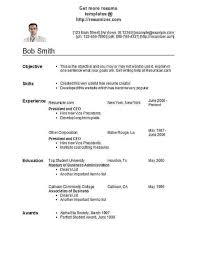 picture resume style 29