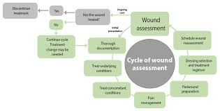 Wound Assessment Chart Template Wound Assessment Why Continuity And Documentation Is So