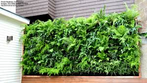 Small Picture Download Vertical Garden Photos Solidaria Garden