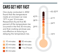 The Troubling Facts Behind Children Dying In Hot Cars Huffpost
