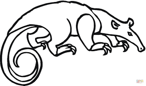 Small Picture Tamandua coloring page Free Printable Coloring Pages