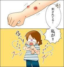 蚊 に 刺され やすい 人 特徴