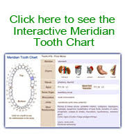 Tooth Organ Meridian Chart Meridian Tooth Chart Toothbody