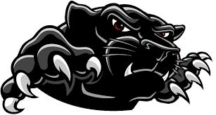 Image - Black-Panther-Logo-Transparent-Background.png | Animal Jam ...