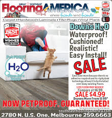 vinyl plank downs h20 pet approved
