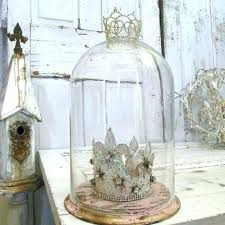 glass bell dome plant display cloche greenhouse s jar alcott hill glass dome bell