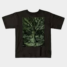 Oak Tree Size Chart Live Oak Tree