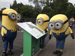 dublin zoo on twitter the minions came to visit dublin zoo today as part of a whistle stop tour of the city