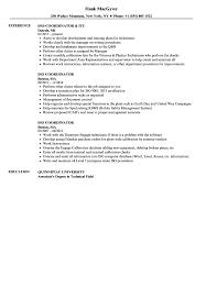 Iso Coordinator Resume Samples Velvet Jobs