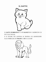 Gatti Da Colorare Nuovo Disegni Da Colorare Gatto Silvestro