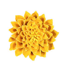 Aliexpress carries many dahlia wall decor related products, including car flower , fake peony head , flower wall , fabric. 6 Adelaide Ceramic Flower Wall Decor 12 Piece Set Plowhearth