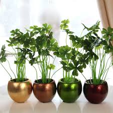 ... Gorgeous Home Interior Ornament With Various Indoor Plant Decoration :  Gorgeous Green Ornament For Living Room ...