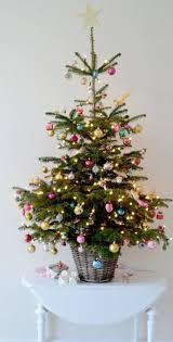 Best 25 Small Christmas Trees Ideas On Pinterest  Small Christmas Trees Small