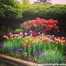Small Picture Perfect Flower Garden Design U And Inspiration Decorating
