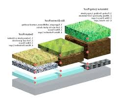 diy green roofs living roof options and layers diy green roof kit diy green roofs