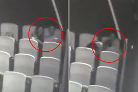 Couples having sex in movie theatre