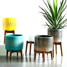 indoor flower pots tall plant large beautiful uk