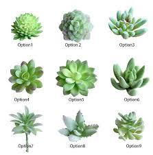 average american flower size charming faux artificial succulent plants emulational cactus plants