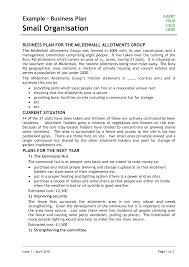 example of a business plan business plan cover letter example the sample plans free form cmerge