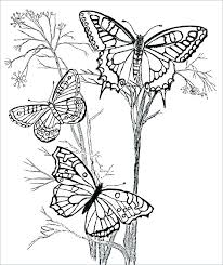 Printable Coloring Pages Of Flowers And Butterflies Free Printable Coloring Pages Butterflies Butterfly Free