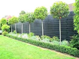 small garden fence ideas fencing metal best fences on front ga