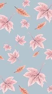 Cute Fall Wallpaper - NawPic