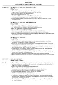 Executive Assistant Resume HBO Executive Assistant Resume Samples Velvet Jobs 47