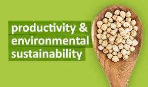 environmental sustainability productivity environmental sustainability