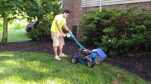 garden edger. Garden Edger Machine Edging Landscape With Bluebird Bug Bed Essilor Carpet 1024
