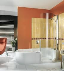 twin line walk in bathtub and shower combo inspiring ideas design modern