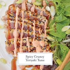 this teriyaki tuna recipe brings a delicious and healthy meal to the table in just over