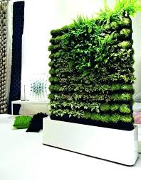 how to make a plant wall how to make a faux living moss wall gardens how indoor living wall